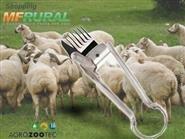 Tosquiadeira Manual para Ovinos e Caprinos com Frete Grátis de R$ 198,00 por apenas R$ 119,90.