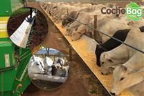 CochoBag para Confinamento e Semi Confinamento 5 Metros + Frete Grátis de R$ 139,99 por apenas R$ 94,99.