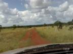 https://imagens.mfrural.com.br/mf-videos-output/2018/9/fazenda-no-para-250920181051548.mp4