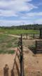 Fazenda 30 Alqueires Formados - Parauapebas