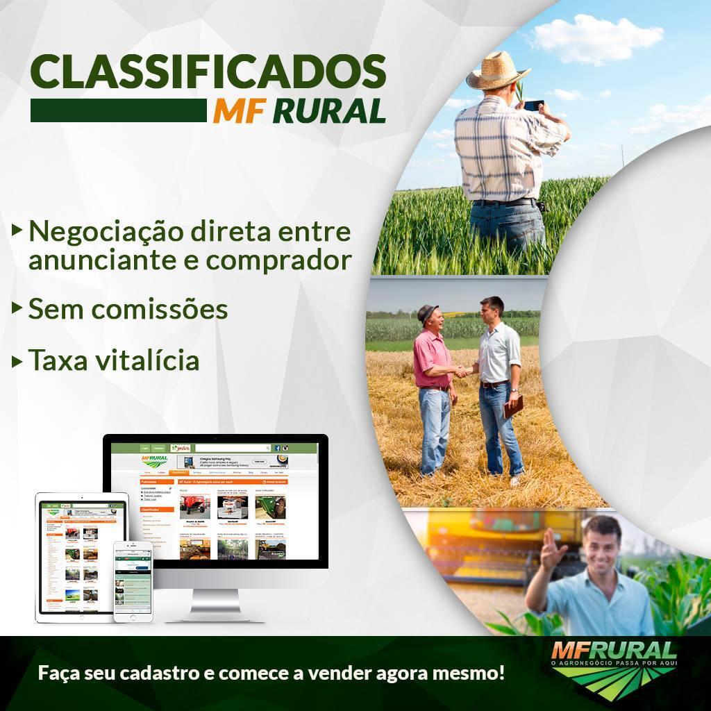 Classificados MF Rural
