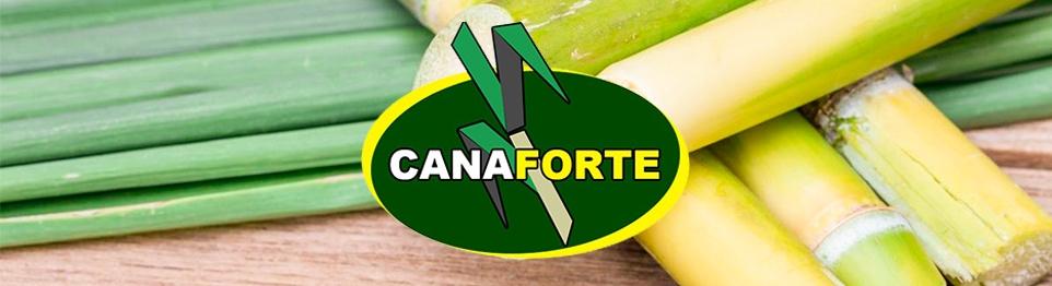 Cana Forte - Loja Oficial