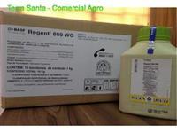 Regente WG800