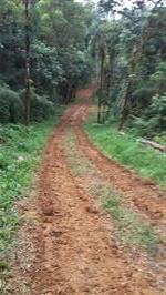 Arrendamento de Terras em Pirabeiraba - Joinville - SC