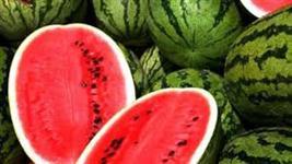 Compro melancia em grandes quantidades