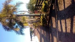 Campinho de 50 hectares