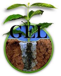 GEL HIDROGEL PARA PLANTIO DE MUDAS de Eucalipto, Café, nativas e outras