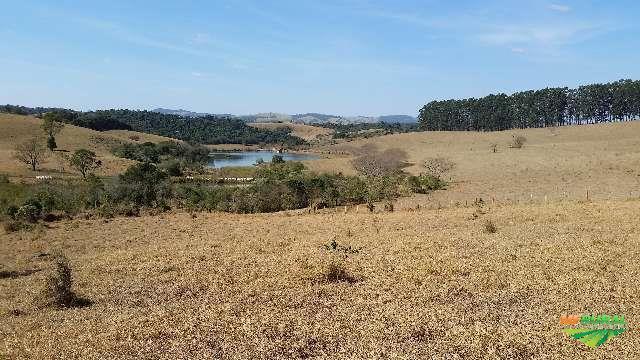Fazenda tuiuti SP -  Santo Antonio com 204 hectares