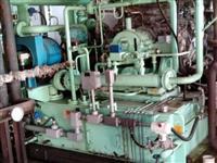 Termoelétrica 2 Megas Cavaco ou Biomassa