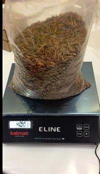 Largas tenebrio molitor desidratação para formulações de rações - 1kg