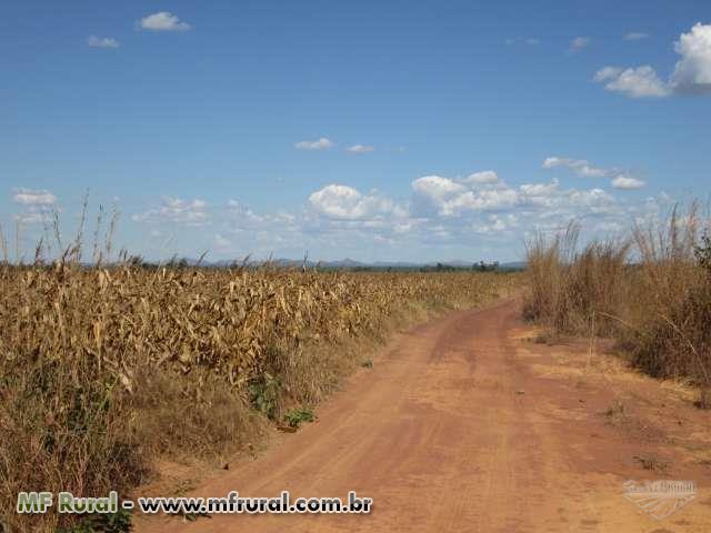 Fazenda para agricultura em Brejinho de Nazaré, Aliança do Tocantins