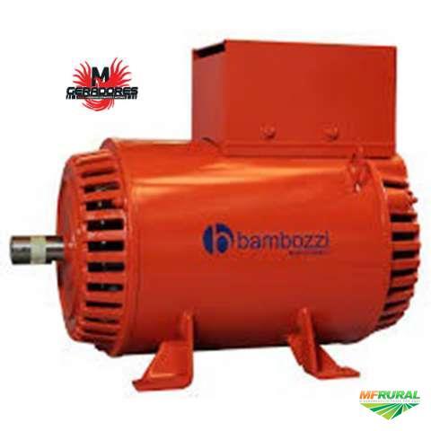 dcf1dd53384 Alternador Para Grupo Gerador ou Geradores Agrícolas Bambozzi 20 kVA ART  60z 220 127V