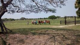 Fazenda no pantanal Paiaguas