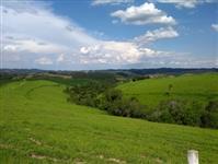 Fazenda 80 Alqueires pecuária e lavoura