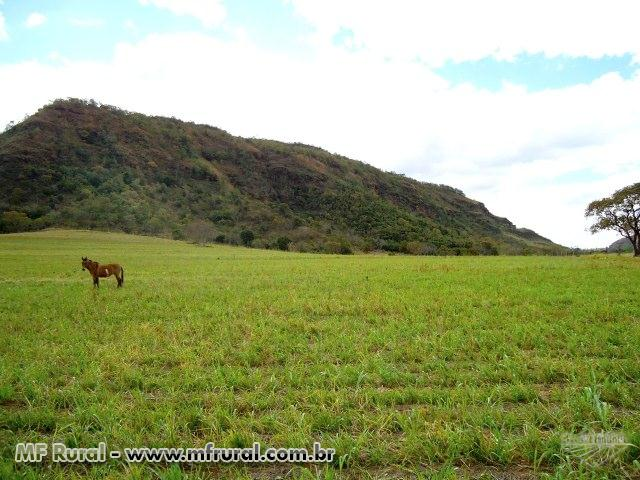 Duas Excelentes Fazendas vizinhas as margens do Rio Grande