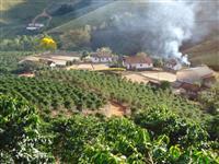 Fazenda de café - Brazópolis - MG