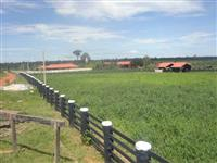 Corretor de fazendas em Rondônia