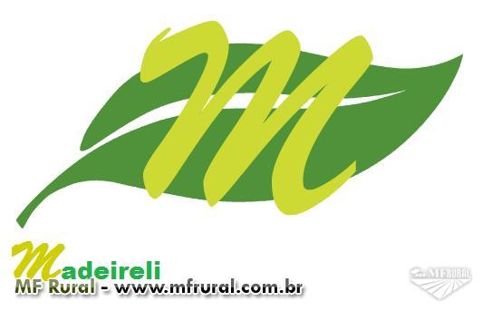 Compramos eucalipto em Goiás