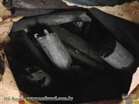 Carvão Vegetal Acácia Negra para Exportação