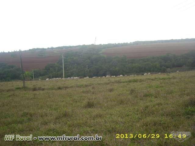 Fazenda Cachoerinha