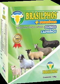 BRASILPHOS + PROBIÓTICO OVINOS & CAPRINOS 01 KG