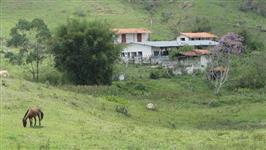 FAZENDA SÃO JUDAS TADEU  À VENDA EM JAMBEIRO - ÁREA 105 ALQ