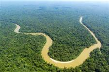 Áreas documentadas a venda floresta amazônica de 3.000 a 29.000 ha
