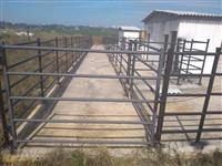 Confinamento bovino / Curral metálico tubular / mangueira de ferro