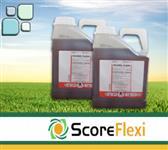 Score Flexi