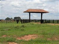 Corretor de Compra, venda e troca de Sitios e Fazendas em todo ES