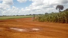 Fazenda com 259 hectares, próximo a  Paraúna/GO