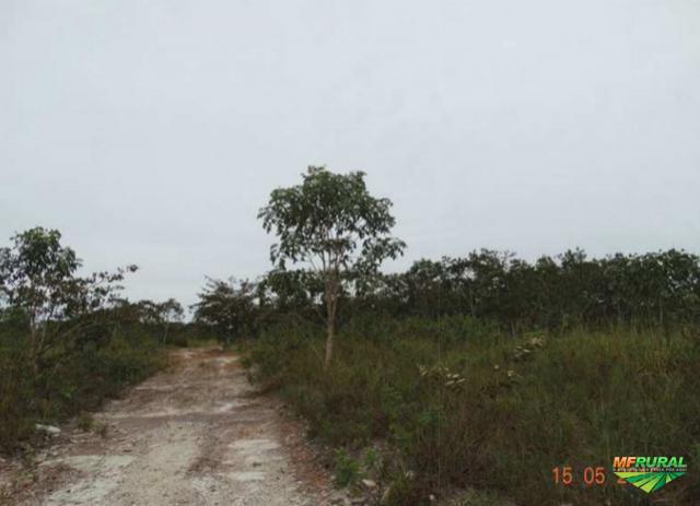 Fazenda 633ha em Baliza/GO