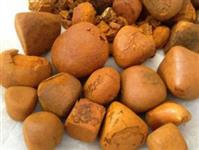 Pedra de Fel- Cálculo Biliar de Boi
