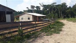 fazenda 267 hectares