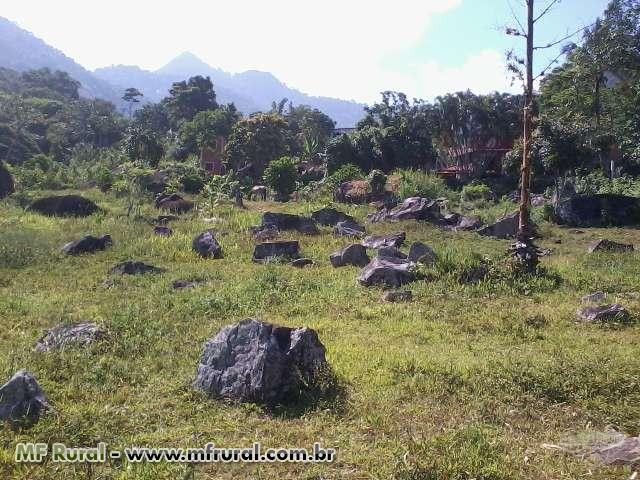 Área Costeira em Itacurutiba - Manguaratiba