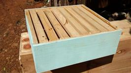 Caixa abelha Apis