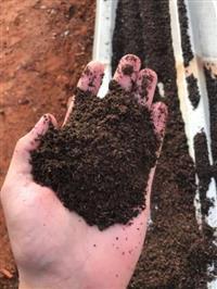 ADUBO ORGÂNICO - Esterco bovino compostado