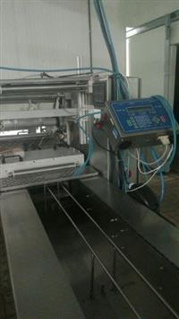 Termoformadora ULMA + Impressora Industrial com Movimentador TF Mini 360 Ano 2009 - #3349