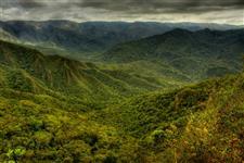 Compensação de Reserva Legal Paraná