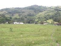 Fazenda em Serra Negra - Pinho