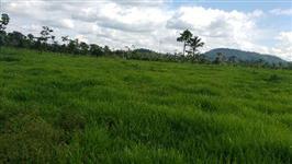 Fazenda Umuarama 1