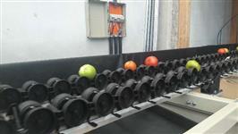 Classificador de frutas / Classificador Eletrônico / Calibrador de Frutas / Calibrador Eletrônico