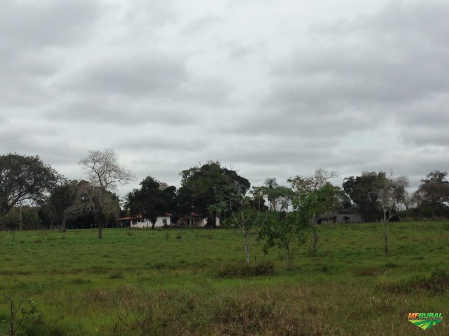Fazenda em Cáceres
