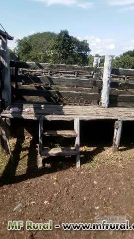 Fazenda em Tocantins (Paranã)