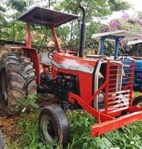 Trator Massey Ferguson 290 4x2 ano 79