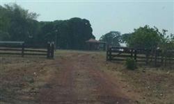 Fazenda 906 alqueires Araguaçu to