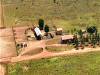 Linda Fazenda no Pará com 67 mil hectares e com pasto para Bois