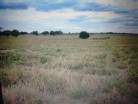 Linda Fazenda de 22.000 hectares em minas