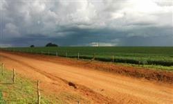 Linda Fazenda Piracanjuba GO 1974 hectares