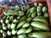 venda de banana nanica e banana prata